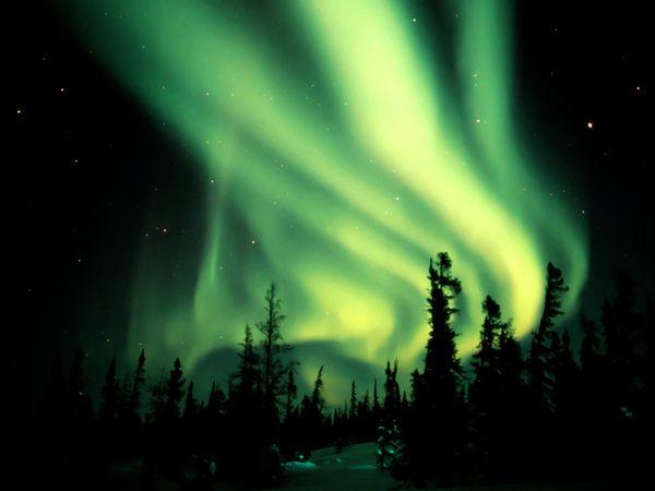 green-aurora-rosing_1417_600x450